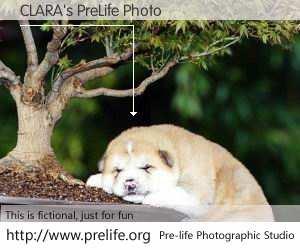 CLARA's PreLife Photo