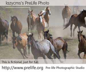 lazycms's PreLife Photo