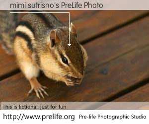 mimi sutrisno's PreLife Photo