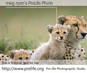 meg ryan's PreLife Photo