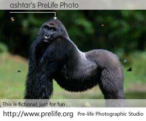 ashtar's PreLife Photo