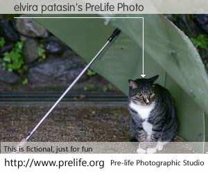 elvira patasin's PreLife Photo