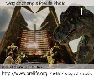 wagxincheng's PreLife Photo