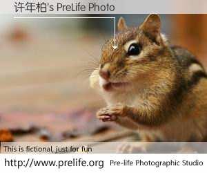 许年柏's PreLife Photo