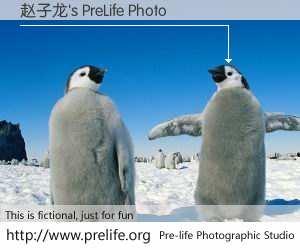 赵子龙's PreLife Photo