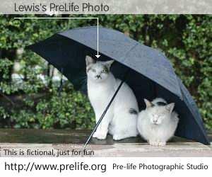 Lewis's PreLife Photo