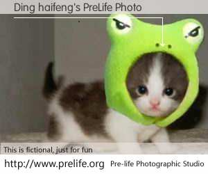 Ding haifeng's PreLife Photo