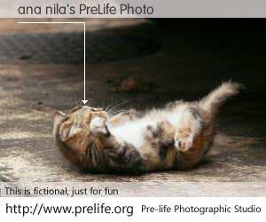 ana nila's PreLife Photo