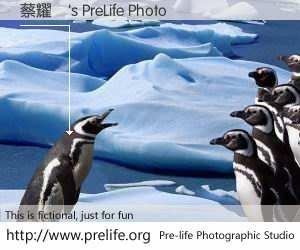 蔡耀倫's PreLife Photo