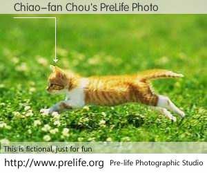 Chiao-fan Chou's PreLife Photo