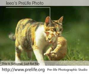 leeo's PreLife Photo
