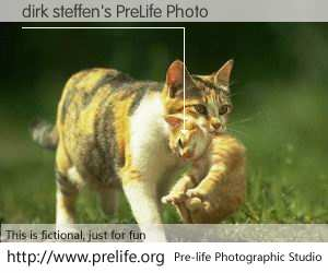 dirk steffen's PreLife Photo