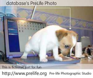 database's PreLife Photo