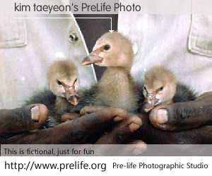 kim taeyeon's PreLife Photo