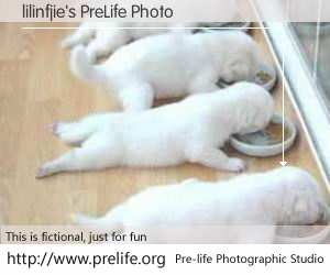 lilinfjie's PreLife Photo