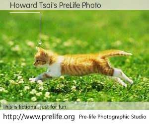 Howard Tsai's PreLife Photo