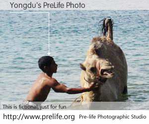 Yongdu's PreLife Photo