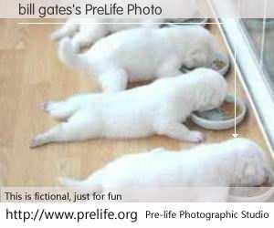 bill gates's PreLife Photo