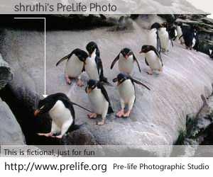 shruthi's PreLife Photo