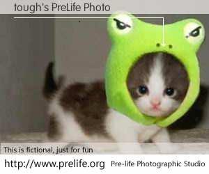 tough's PreLife Photo