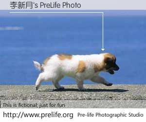 李新月's PreLife Photo