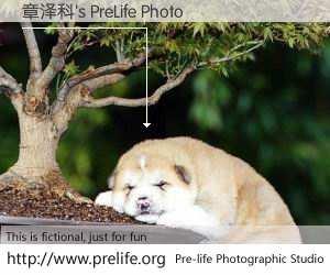 章泽科's PreLife Photo