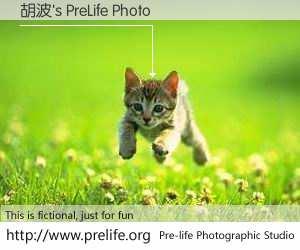胡波's PreLife Photo