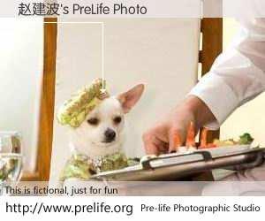 赵建波's PreLife Photo