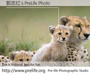 郭志红's PreLife Photo