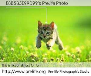 E8B5B5E99D99's PreLife Photo