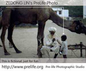 ZEDONG.LIN's PreLife Photo