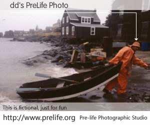 dd's PreLife Photo
