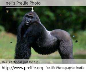 neil's PreLife Photo