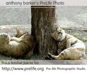 anthony barker's PreLife Photo