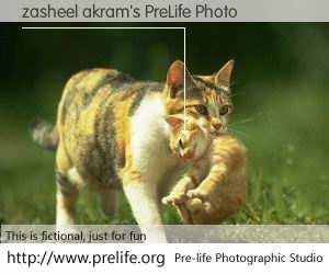 zasheel akram's PreLife Photo