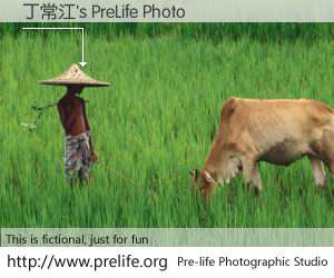 丁常江's PreLife Photo