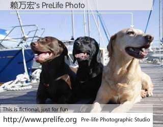 赖万宏's PreLife Photo