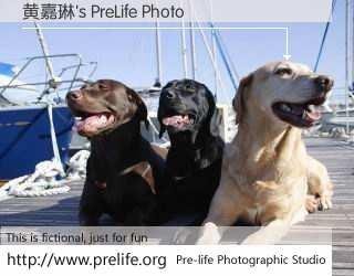 黄嘉琳's PreLife Photo