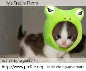 lty's PreLife Photo