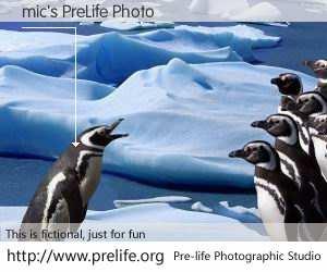 mic's PreLife Photo