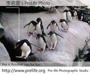 李君夏's PreLife Photo