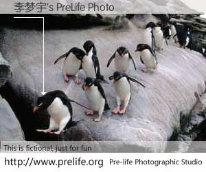 李梦宇's PreLife Photo