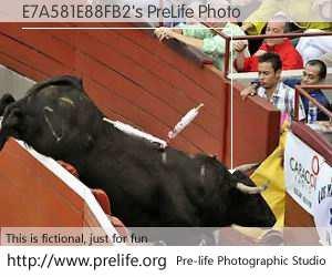 E7A581E88FB2's PreLife Photo