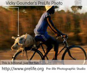 Vicky Gounder's PreLife Photo