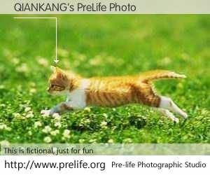 QIANKANG's PreLife Photo