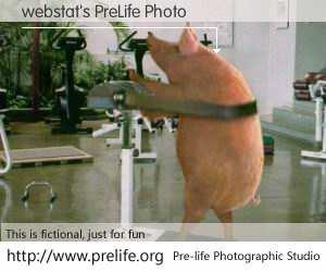 webstat's PreLife Photo