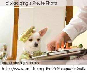 qi xiao qing's PreLife Photo
