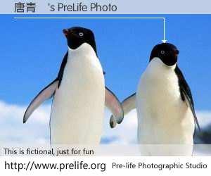 唐青儀's PreLife Photo
