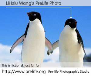 LiHsiu Wang's PreLife Photo