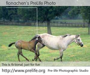 fionachen's PreLife Photo